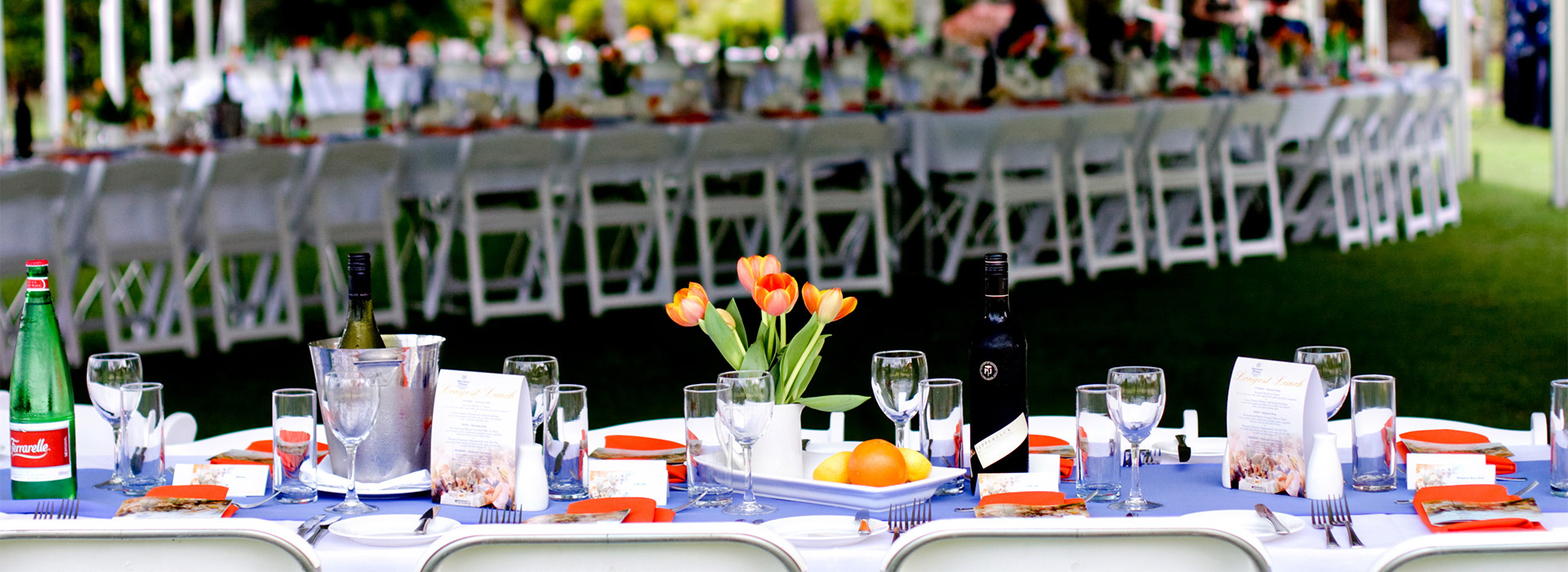 White table linen with multi coloured bands site name